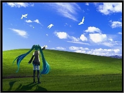 Ptaki, Vocaloid, Miku Hatsune, Windows XP